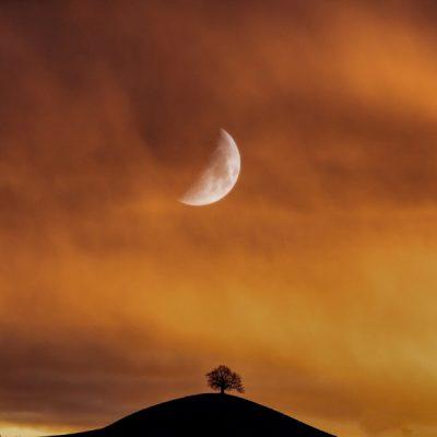 Luna.J_Memoria_191128